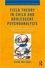 Molinari-Field-Theory-in-Child-and-Adolescent-Psychoanalysis