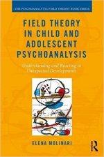 Molinari-Field-Theory-in-Child-and-Adolescent-Psychoanalysis